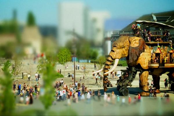 elephant_400x600